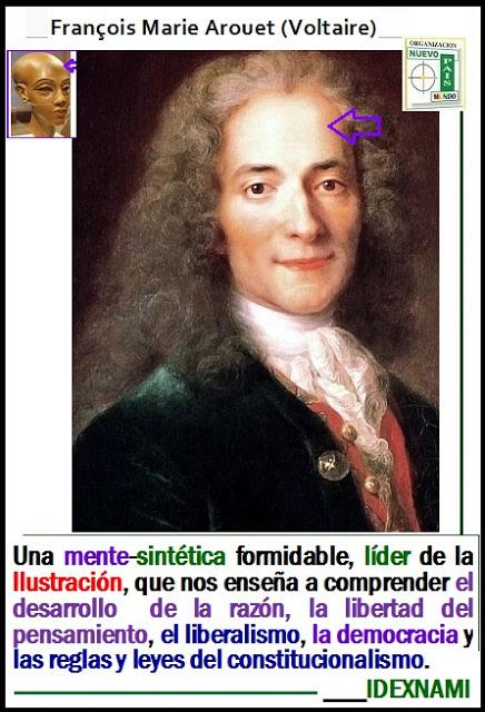Voltaire-una-mente-sintetica-formidable-IDEXNAMI