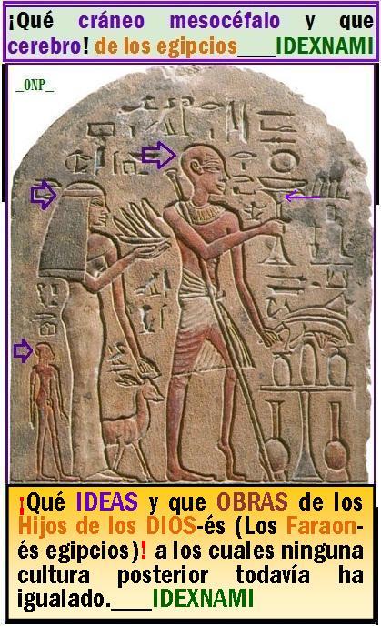 Que cerebros, que ideas y que Obras de los Hijos de los Dios-es en Egipto-IDEXNAMI