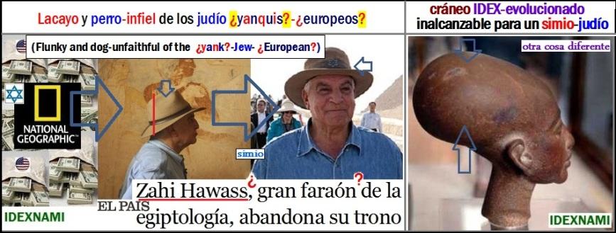 un-simio-hawass-al-lado-de-un-craneo-idex-evolucionado-egipcio