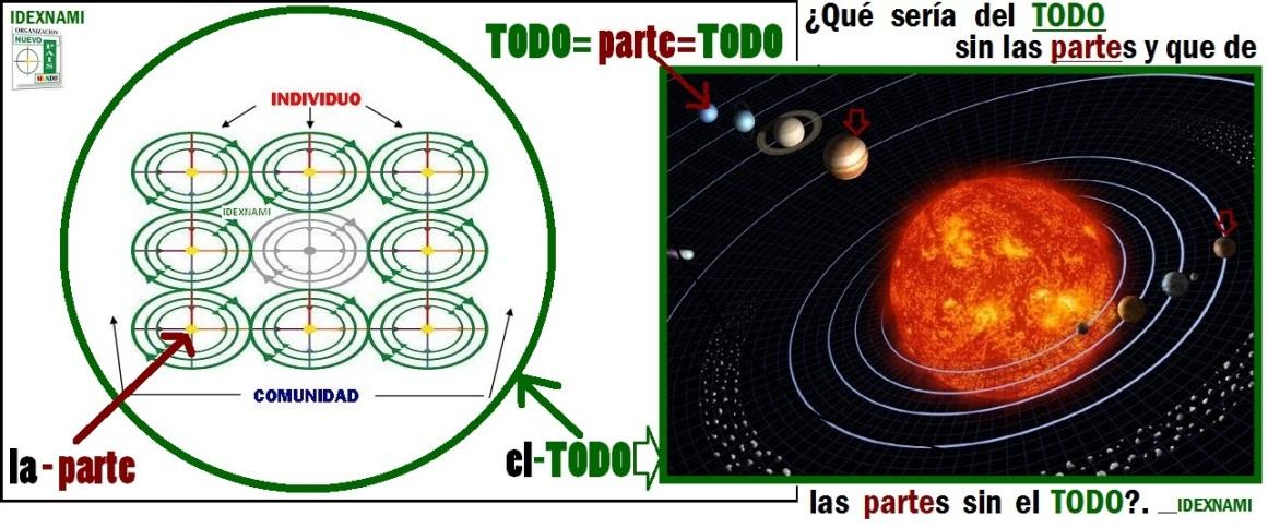 EL TODO y la parte - IDEXNAMI