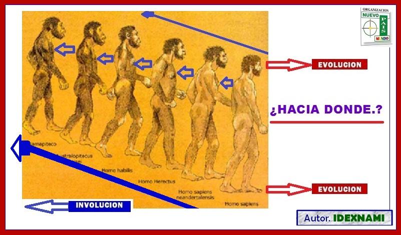 EVOLUCIÓN.... hacia donde - IDEXNAMI (2)