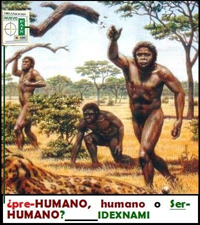 origen-del-hombre-pre-humano-humano-o-ser-humano-autor-idexnami